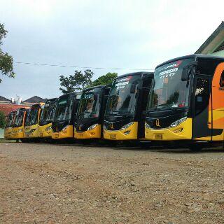Mengapa Memilih Bus Qitarabu